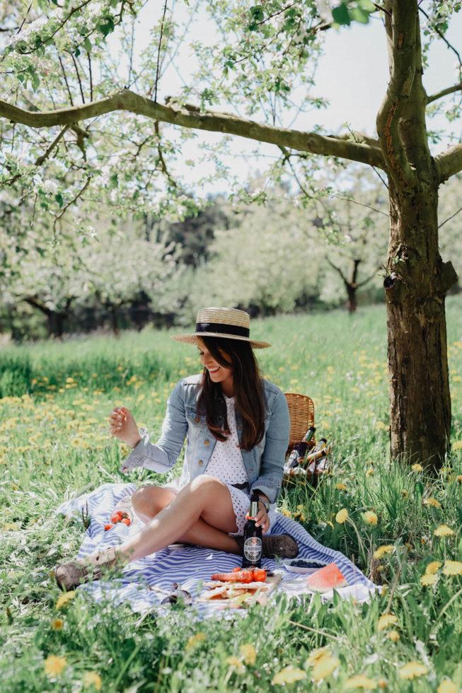 Ein Picknick im Freien zwischen Kirschbäumen