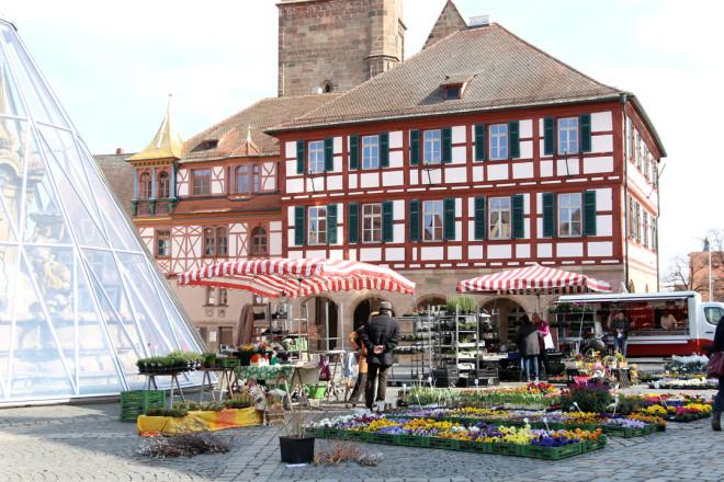 Frühlingsblumen Markt Schwabach