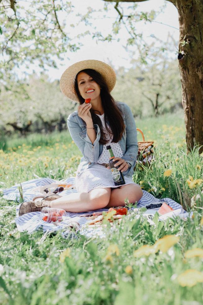 Ein Picknick zwischen Kirschbäumen
