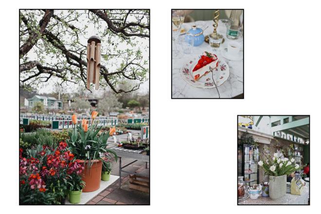 Pieces Of The Week 306, Blumen kaufen in der Staudengärtnerei Augustin in Effeltrich, Kuchen essen im Café in der Staudengärtnerei Effeltrich
