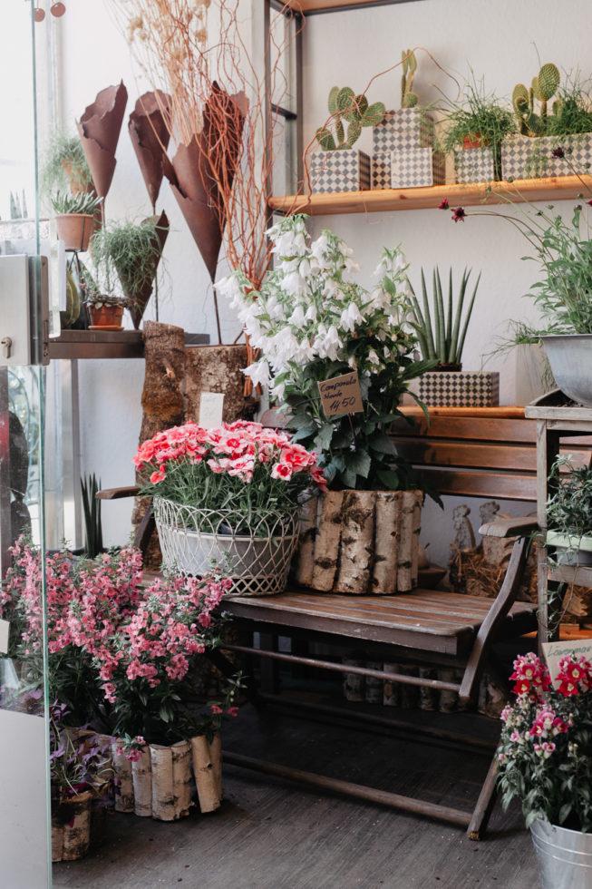 Meine Lieblingsläden in Schwabach und Nürnberg, Blumen & Art Nürnberg