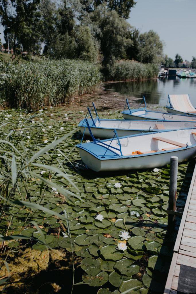 Bootsfahrt auf der Alten Donau in Wien