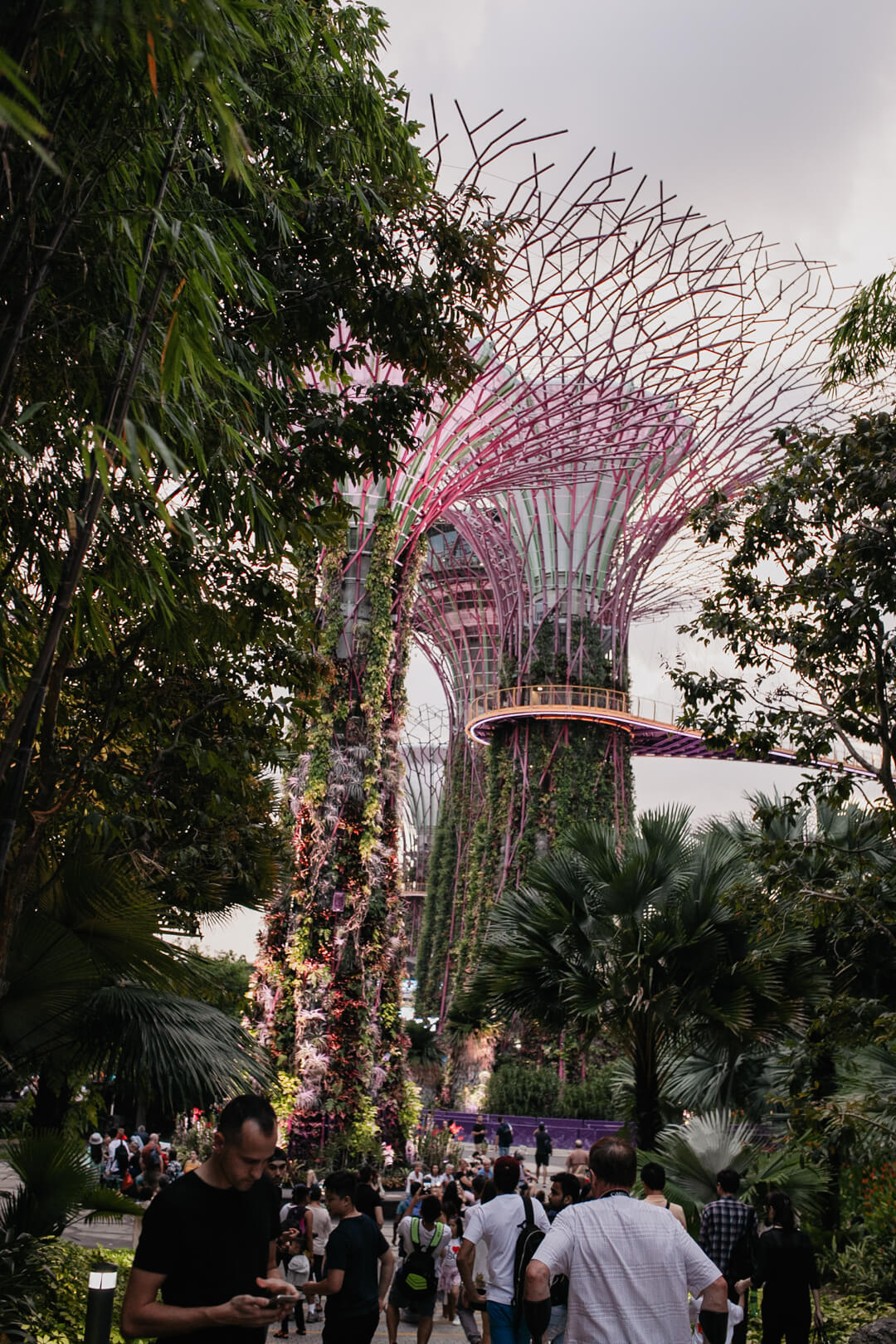 Supertrees im Garden by the Bay // Pieces of Mariposa - Lifestyle Blog aus Nürnberg