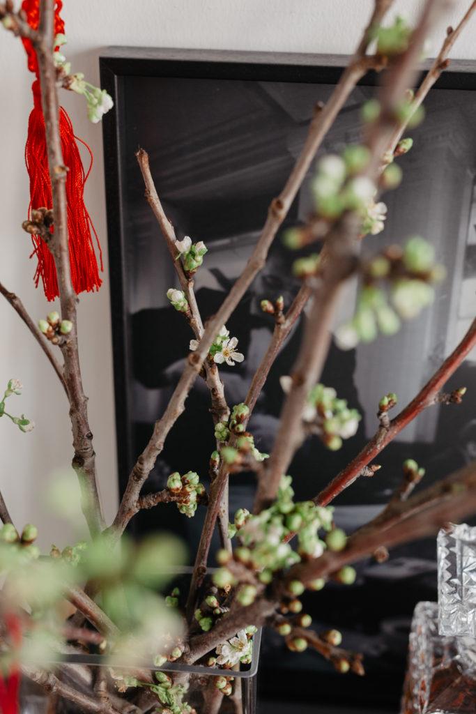 Frühlingsstimmung für Zuhause